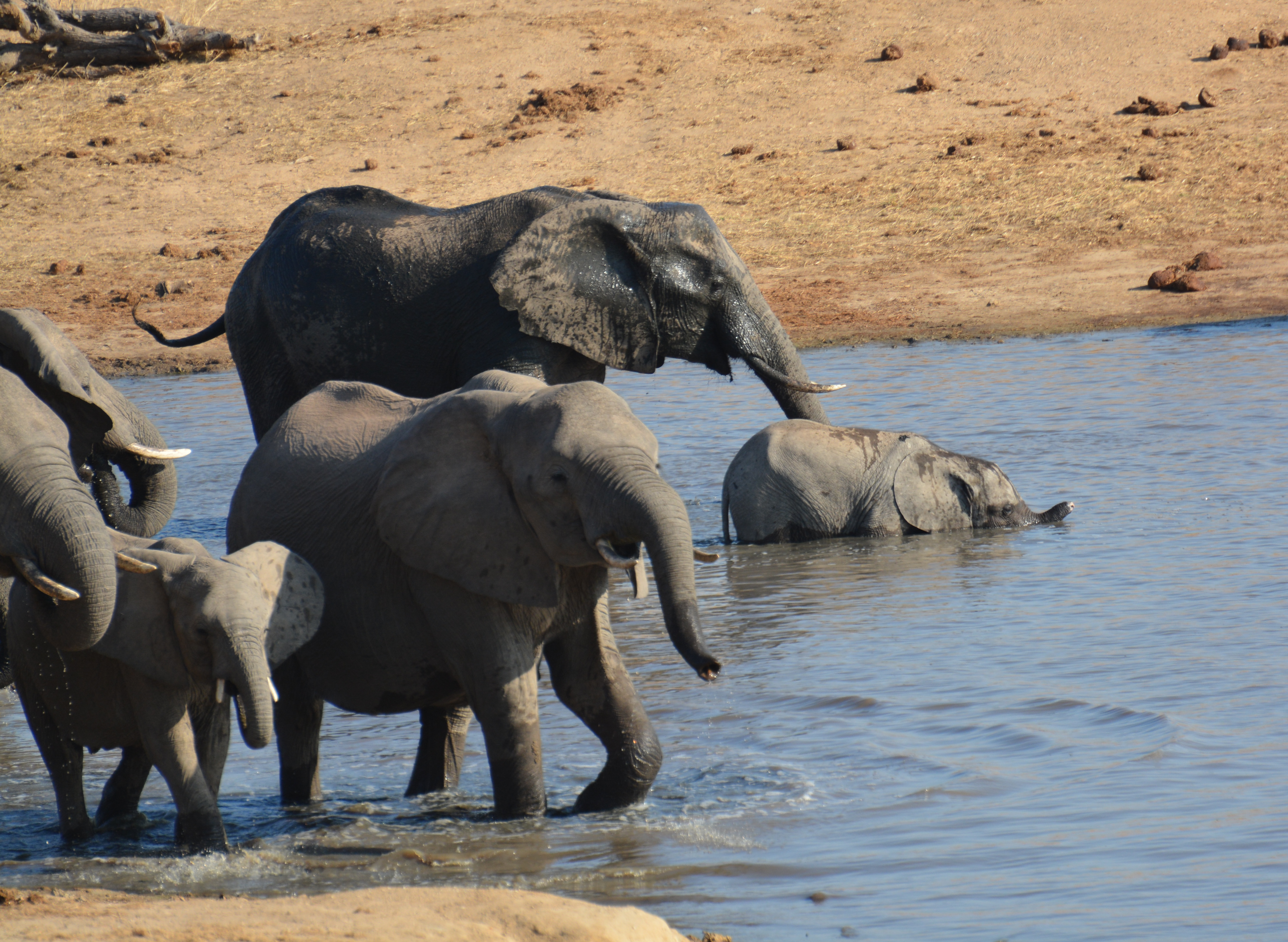 AFRICA JULY 2017_6821_edited-1