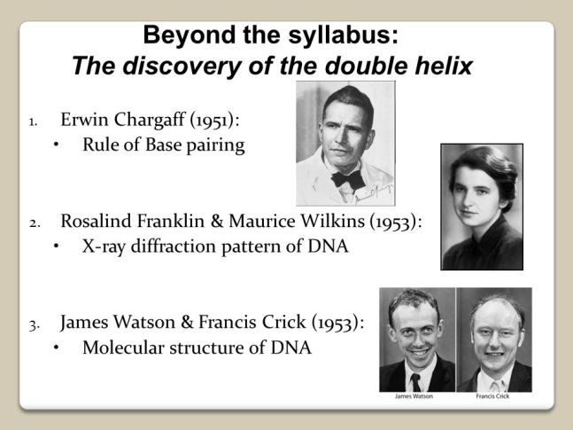 DISCOVERY OF THE DOUBLE HELIX