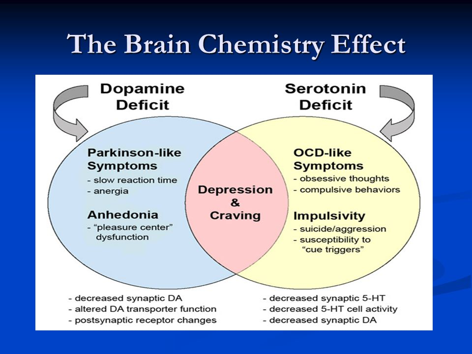 The Brain Chemistry Effect