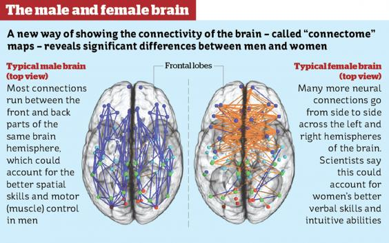 BRAIN DIFFERENCE MEN AND WOMEN